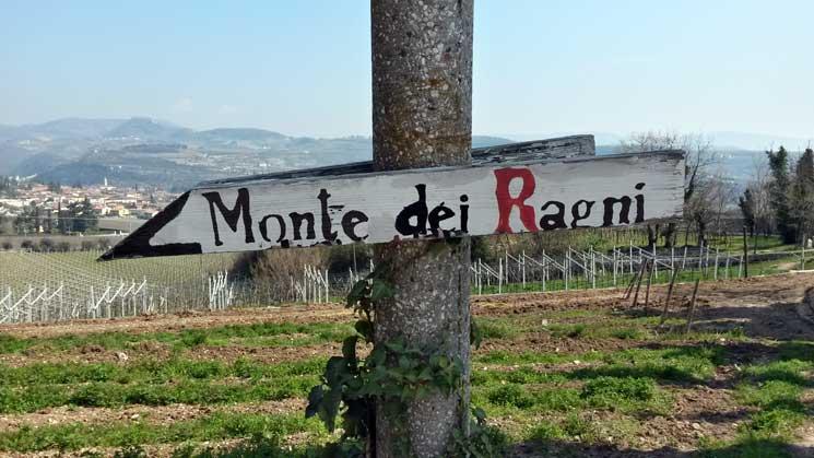 La coscienza di Zeno Zignoli: la cantina Monte dei Ragni