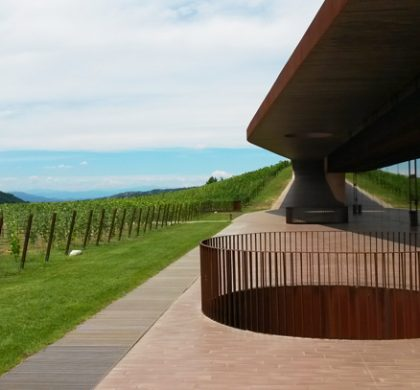 Marchesi Antinori, sorseggiare la storia in un calice